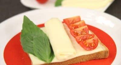 Toast Art drapeau Italien - Galbani
